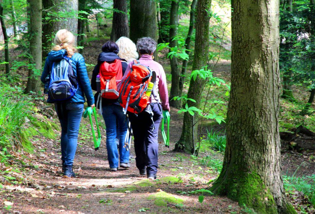 Waldbaden Ausbildung zum Kursleiter